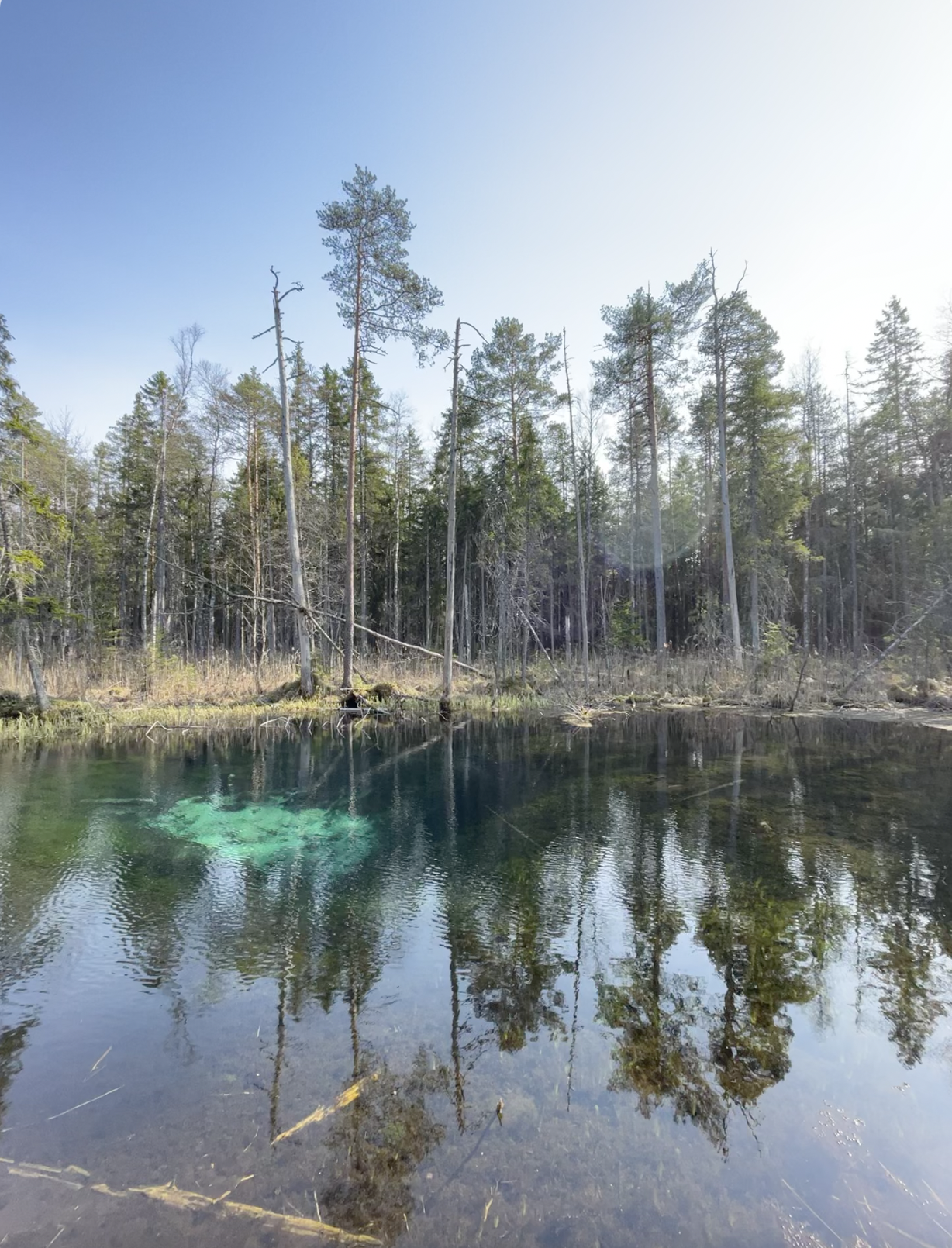 Hiking by Watersources in Estonia