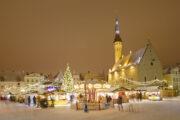 Tallinn City food Tour