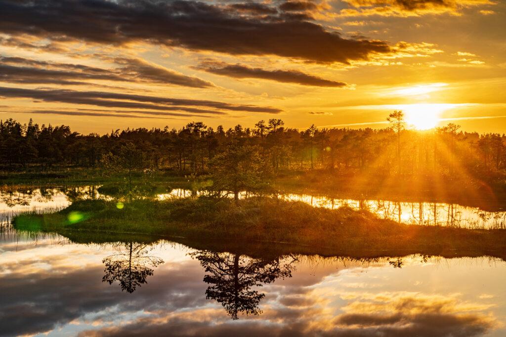 Visit Estonia Estland Travel